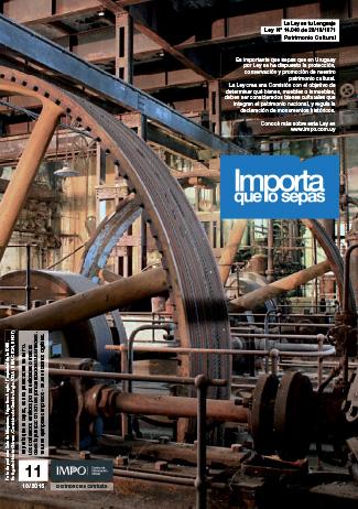 Revista Importa que los Sepas Edición N°11