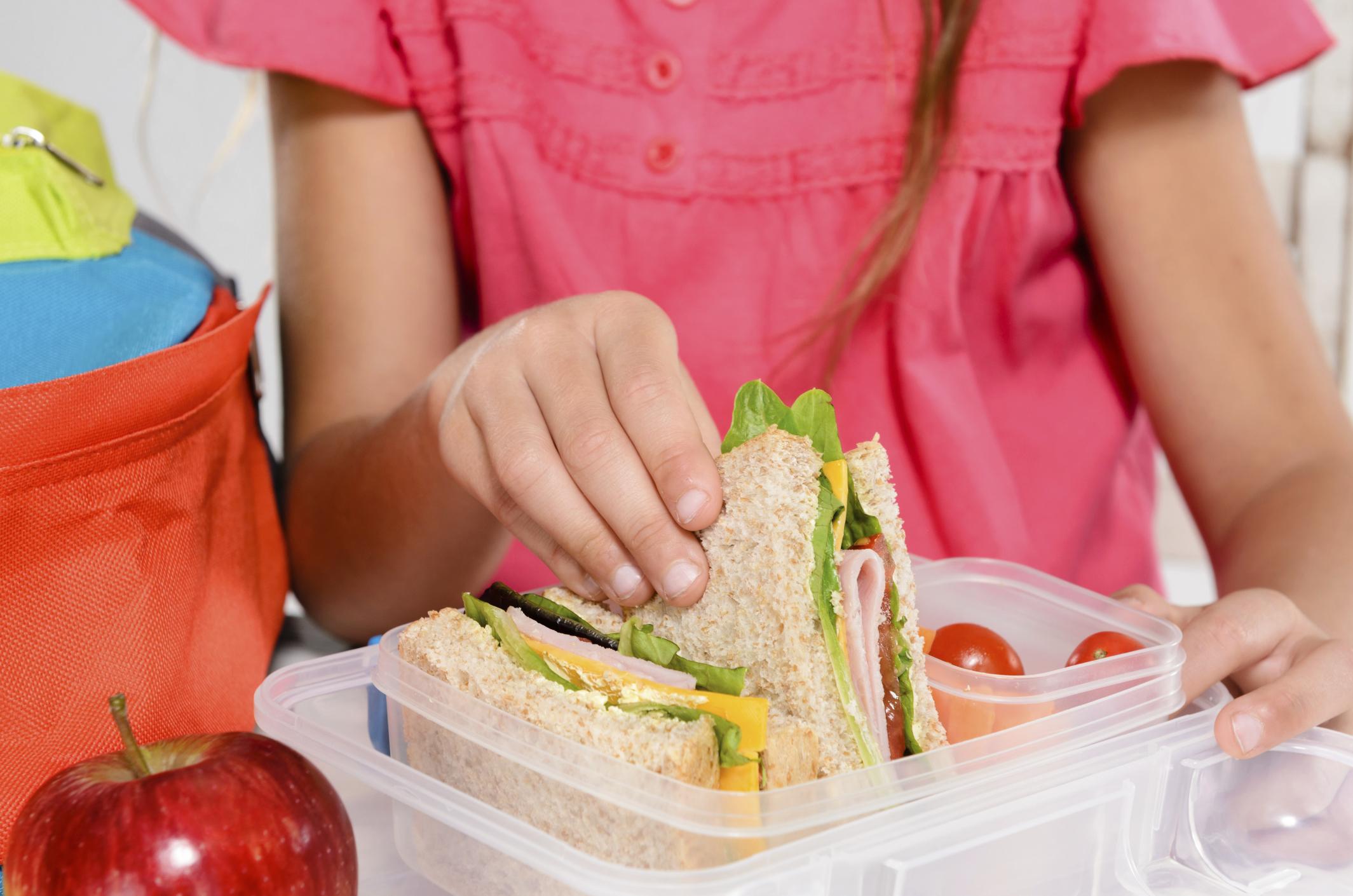 Alimentación Saludable Como Política Pública