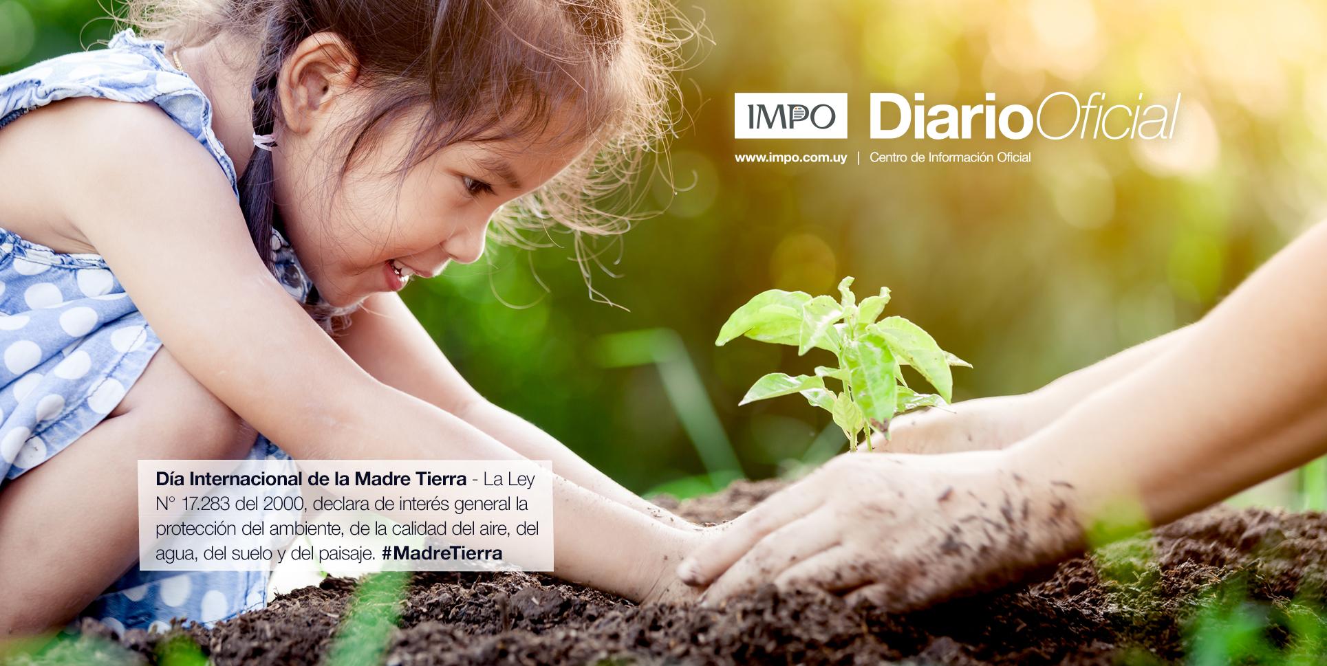 Niña Plantando Un Plantín Con Ayuda De Un Mayor