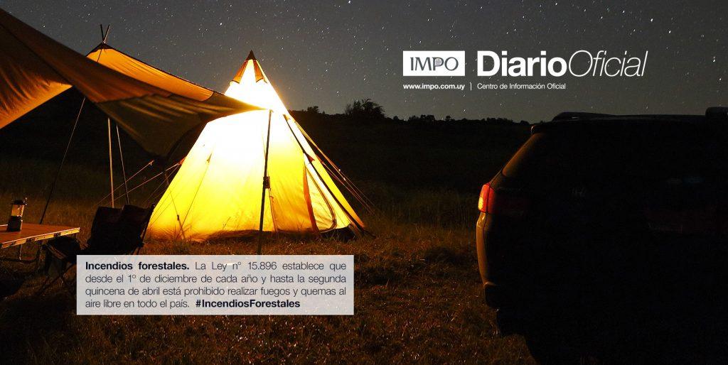 Campamento iluminado con luz eléctrica