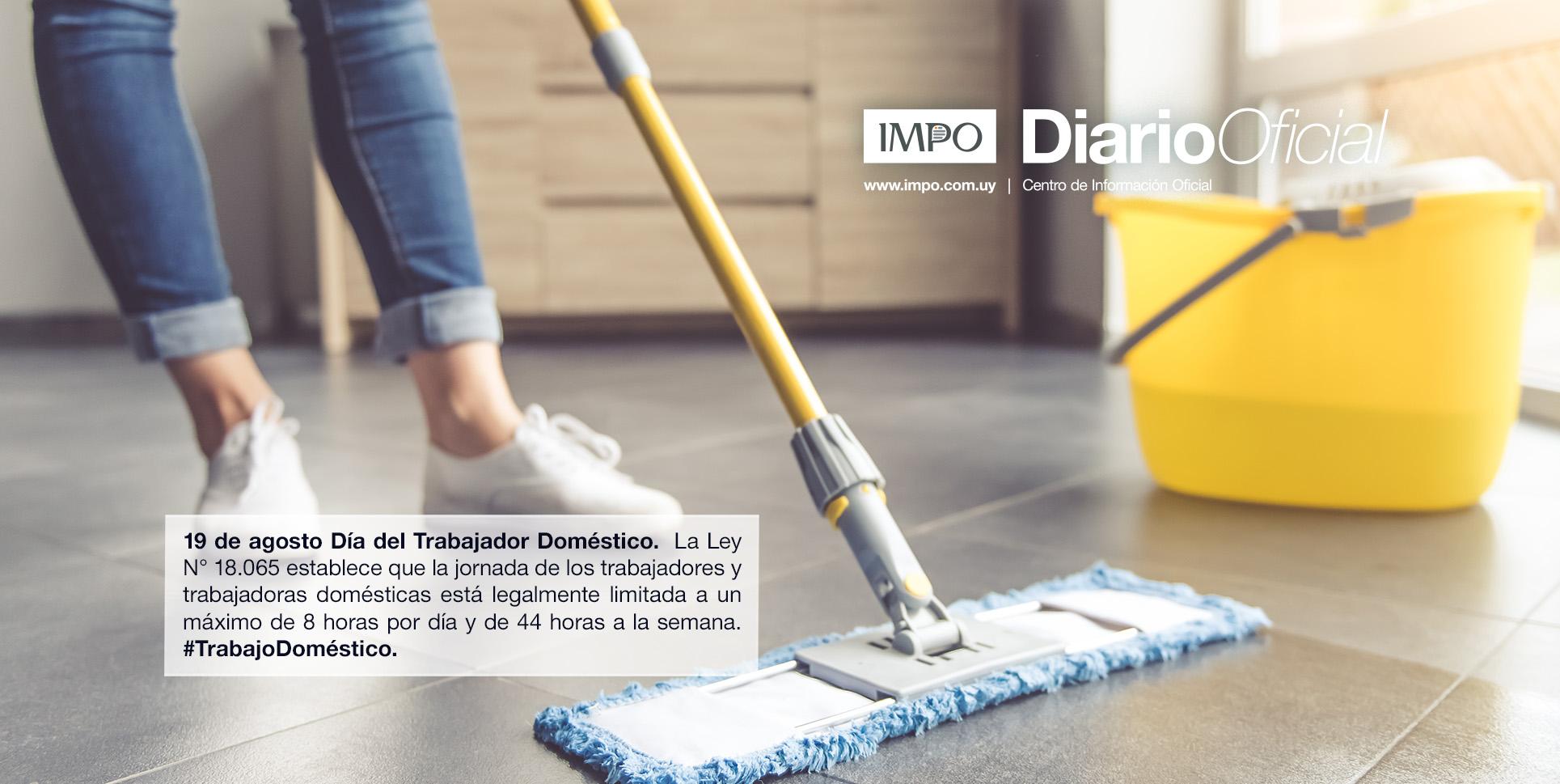 Persona Limpiando El Piso